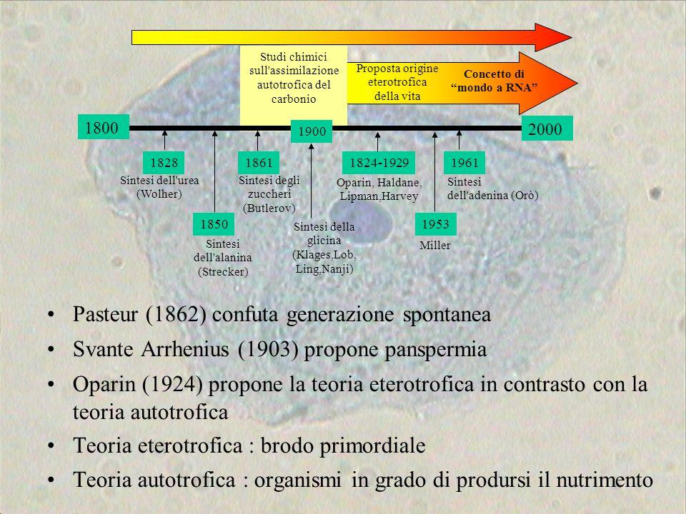 Concetto di mondo a RNA
