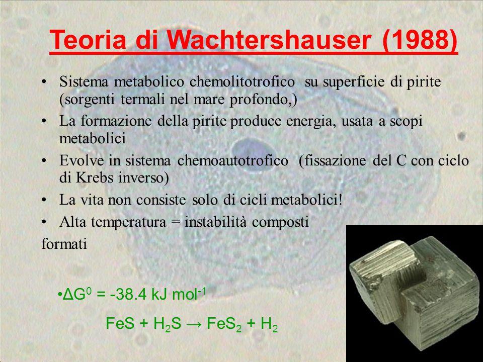 Teoria di Wachtershauser (1988)