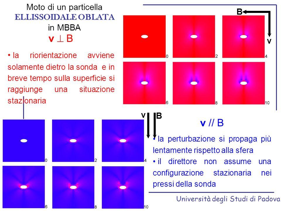 v  B v // B Moto di un particella ELLISSOIDALE OBLATA B in MBBA v