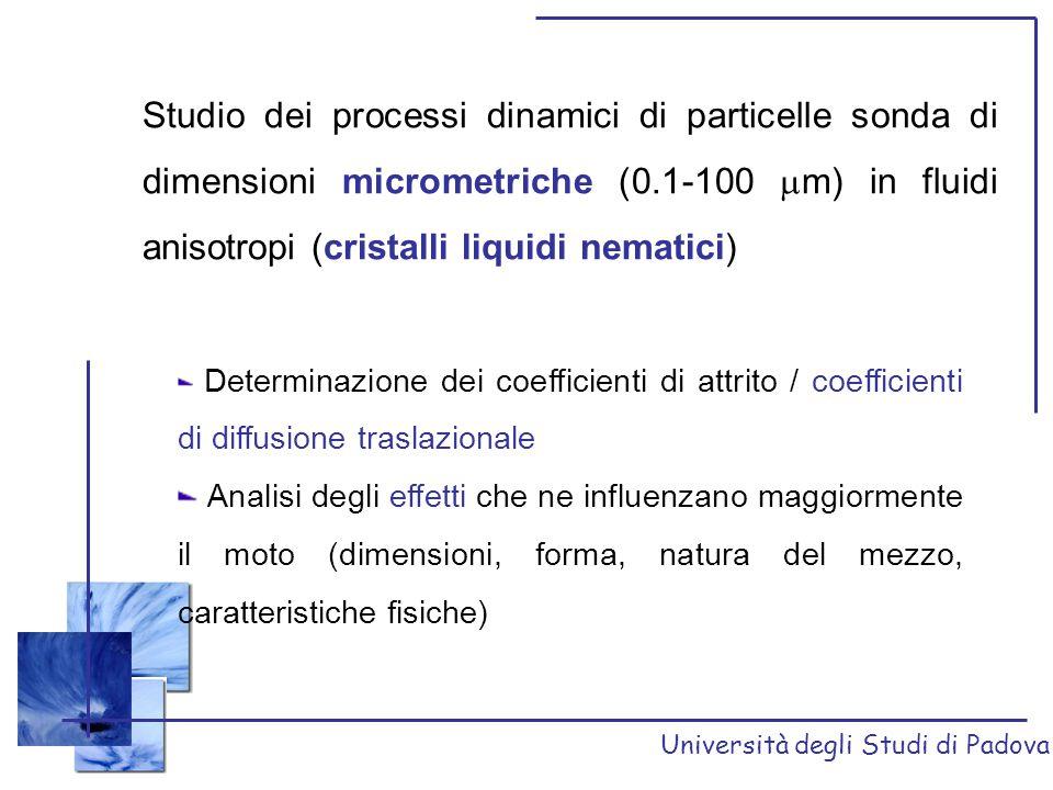 Studio dei processi dinamici di particelle sonda di dimensioni micrometriche (0.1-100 m) in fluidi anisotropi (cristalli liquidi nematici)