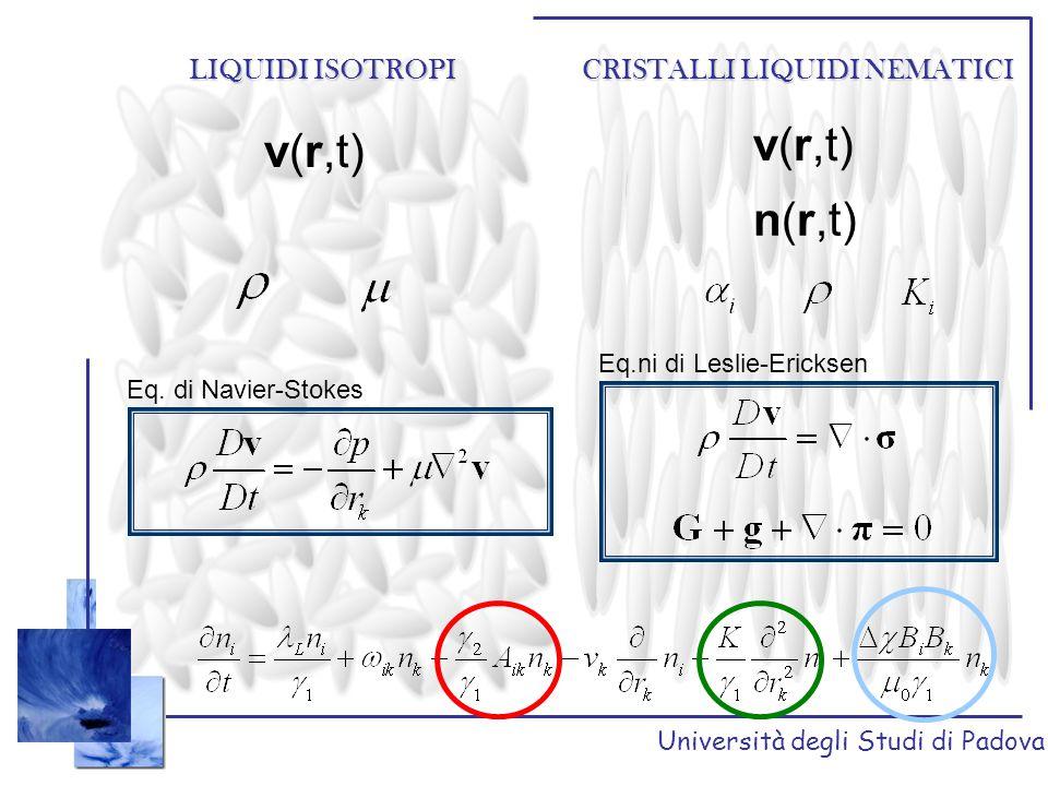 v(r,t) v(r,t) n(r,t) LIQUIDI ISOTROPI CRISTALLI LIQUIDI NEMATICI