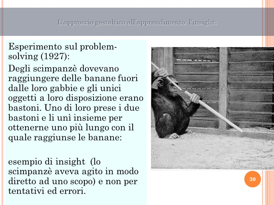 L'approccio gestaltico all'apprendimento: l'insight: