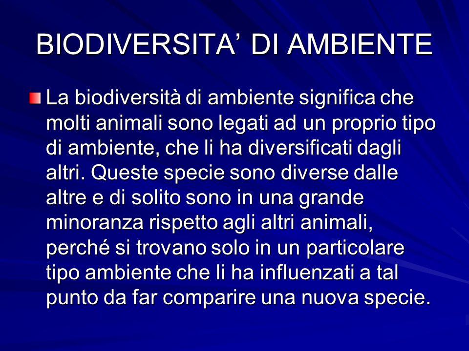 BIODIVERSITA' DI AMBIENTE