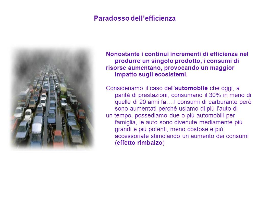 Paradosso dell'efficienza