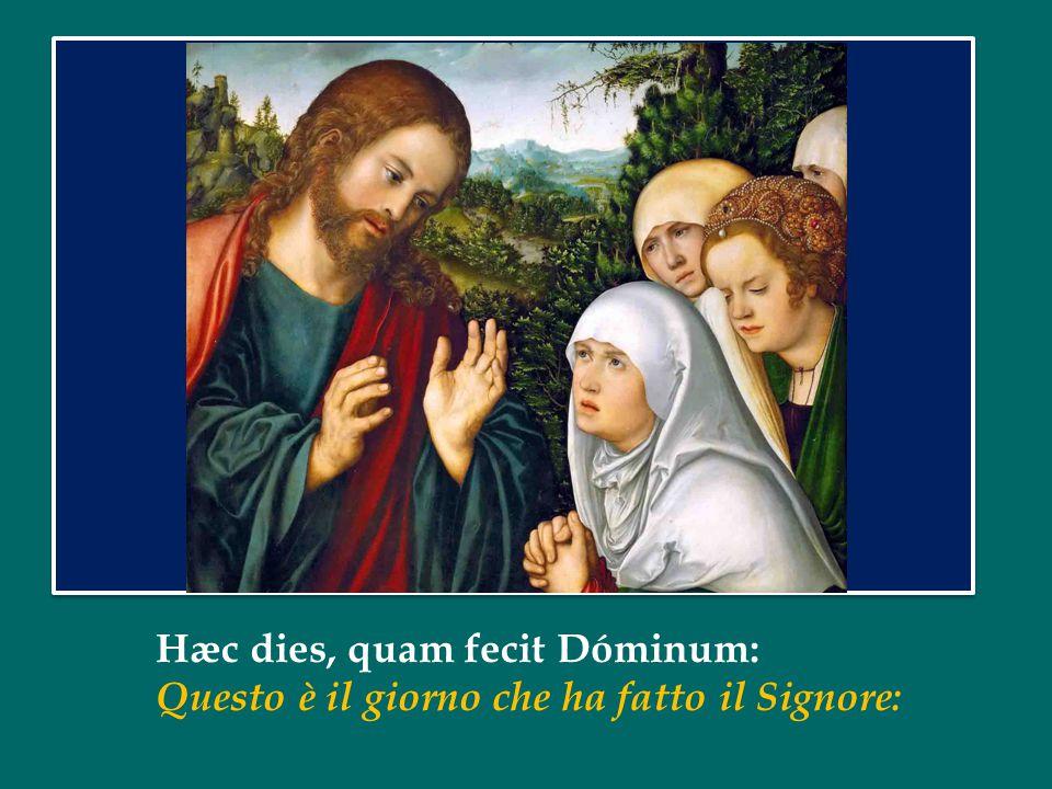 Hæc dies, quam fecit Dóminum: