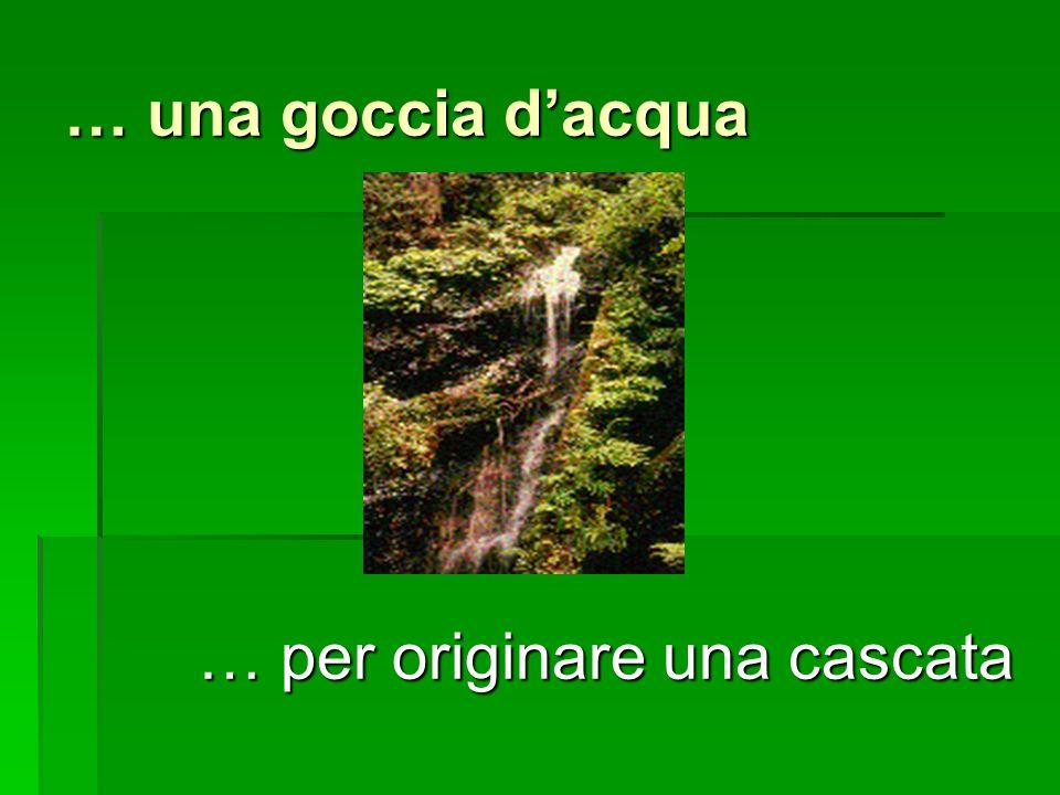 … una goccia d'acqua … per originare una cascata