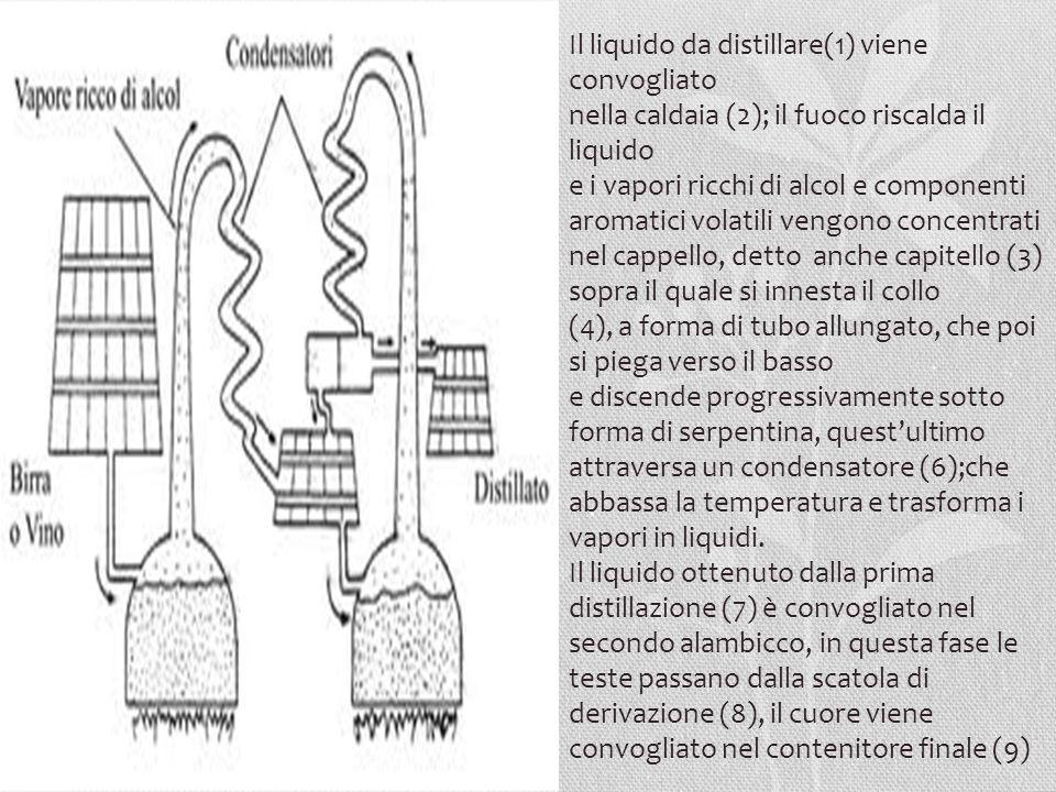 Il liquido da distillare(1) viene convogliato