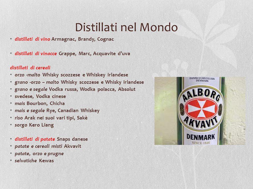 Distillati nel Mondo distillati di vino Armagnac, Brandy, Cognac
