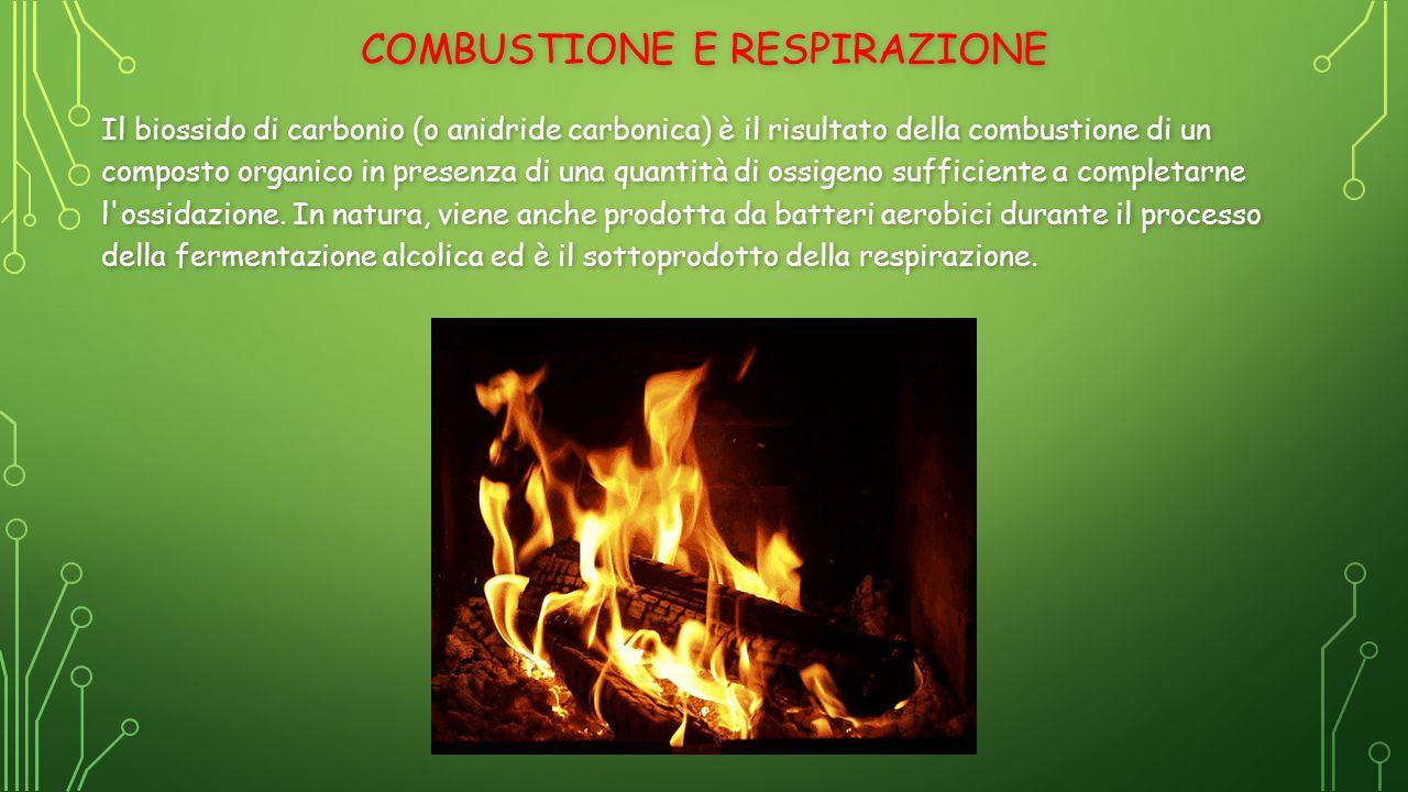 Combustione e respirazione