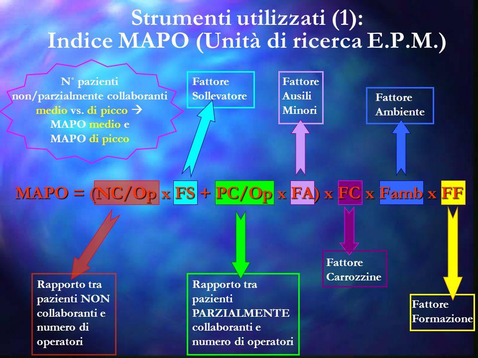 Strumenti utilizzati (1): Indice MAPO (Unità di ricerca E.P.M.)