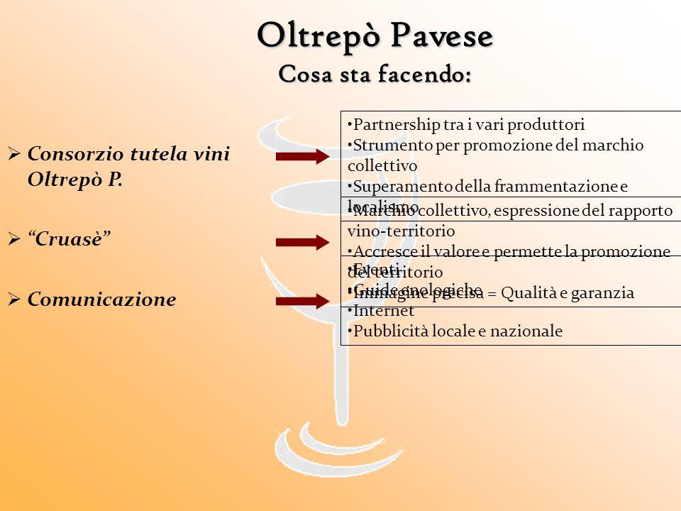 Oltrepò Pavese Cosa sta facendo: