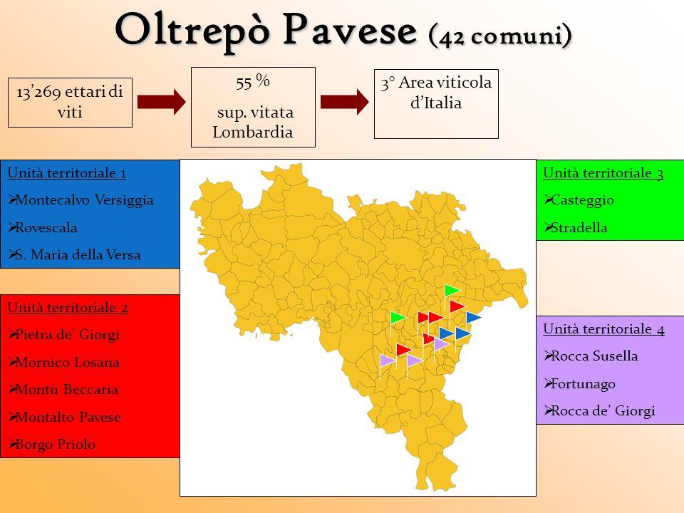 Oltrepò Pavese (42 comuni)