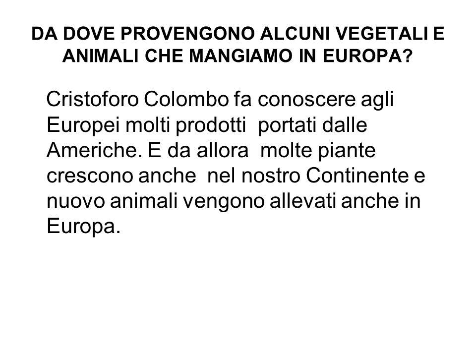 DA DOVE PROVENGONO ALCUNI VEGETALI E ANIMALI CHE MANGIAMO IN EUROPA