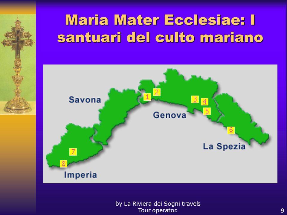 Maria Mater Ecclesiae: I santuari del culto mariano