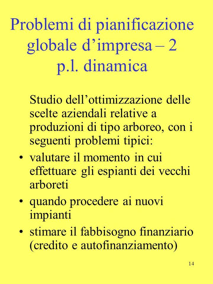 Problemi di pianificazione globale d'impresa – 2 p.l. dinamica
