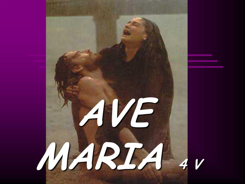 AVE MARIA 4 V