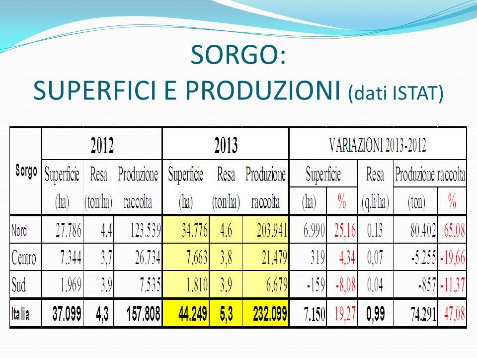 SORGO: SUPERFICI E PRODUZIONI (dati ISTAT)