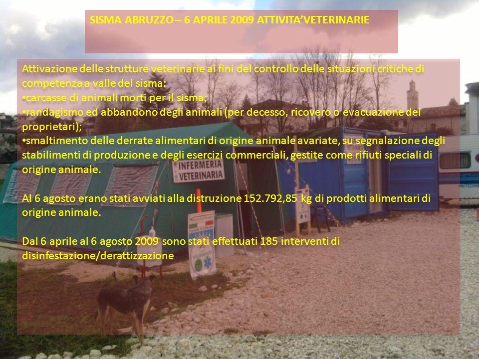 SISMA ABRUZZO – 6 APRILE 2009 ATTIVITA'VETERINARIE