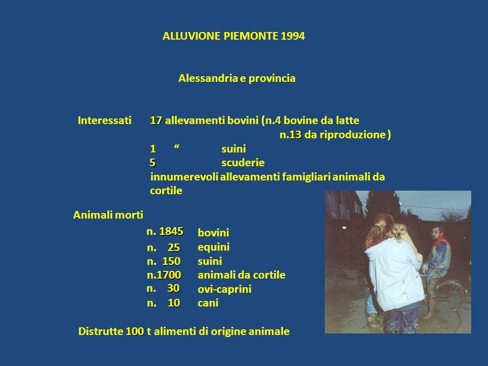 ALLUVIONE PIEMONTE 1994 Alessandria e provincia. Interessati. 17 allevamenti bovini (n.4 bovine da latte.