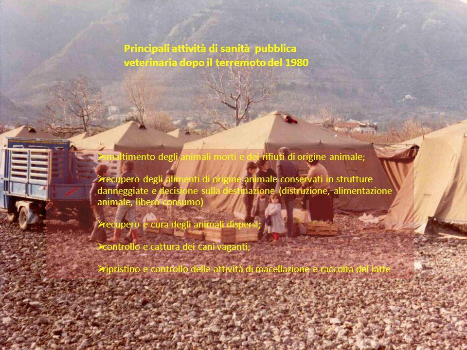 Principali attività di sanità pubblica veterinaria dopo il terremoto del 1980