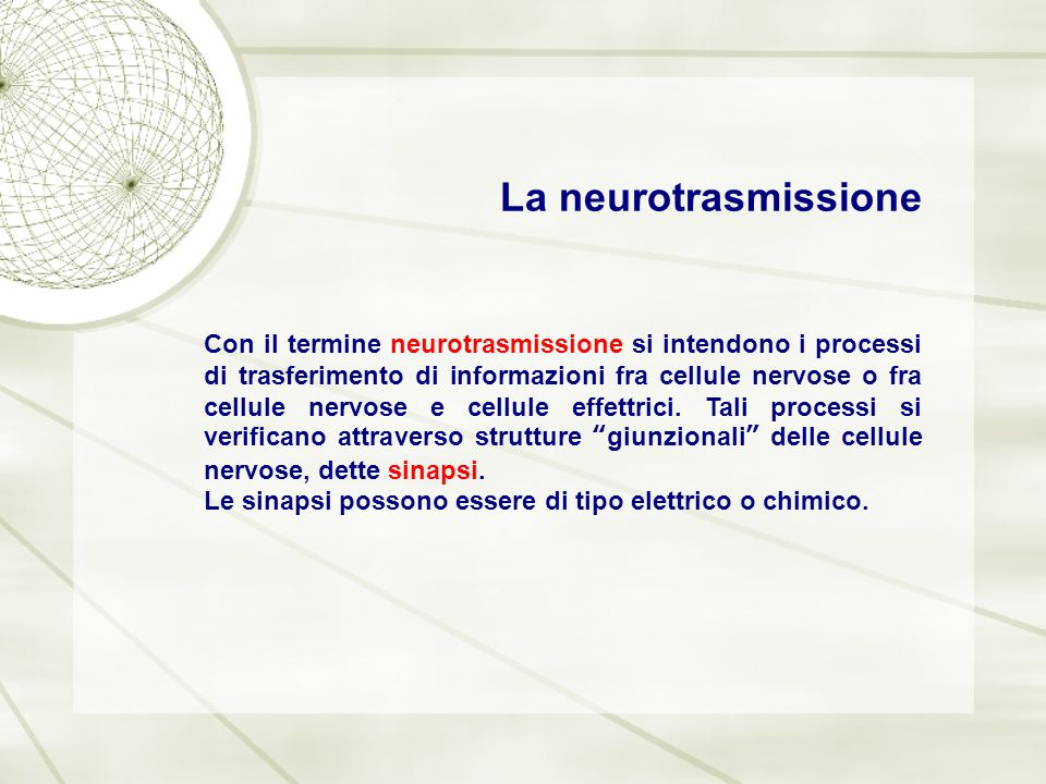 La neurotrasmissione