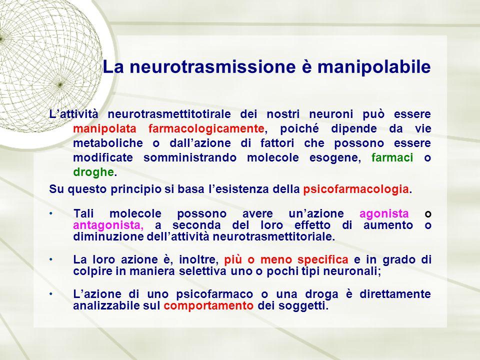 La neurotrasmissione è manipolabile