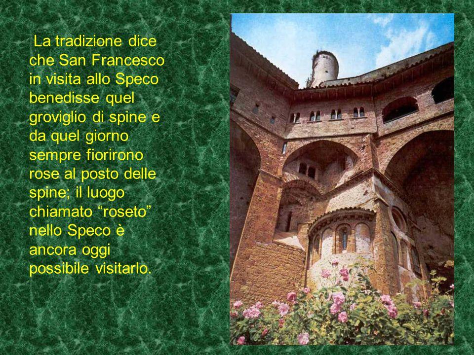La tradizione dice che San Francesco in visita allo Speco benedisse quel groviglio di spine e da quel giorno sempre fiorirono rose al posto delle spine; il luogo chiamato roseto nello Speco è ancora oggi possibile visitarlo.