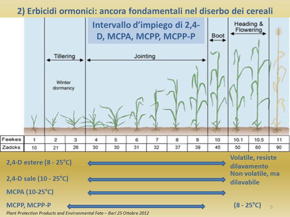 2) Erbicidi ormonici: ancora fondamentali nel diserbo dei cereali