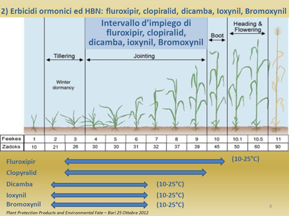 2) Erbicidi ormonici ed HBN: fluroxipir, clopiralid, dicamba, Ioxynil, Bromoxynil