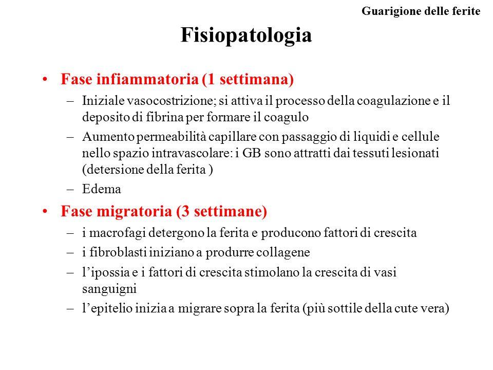 Fisiopatologia Fase infiammatoria (1 settimana)
