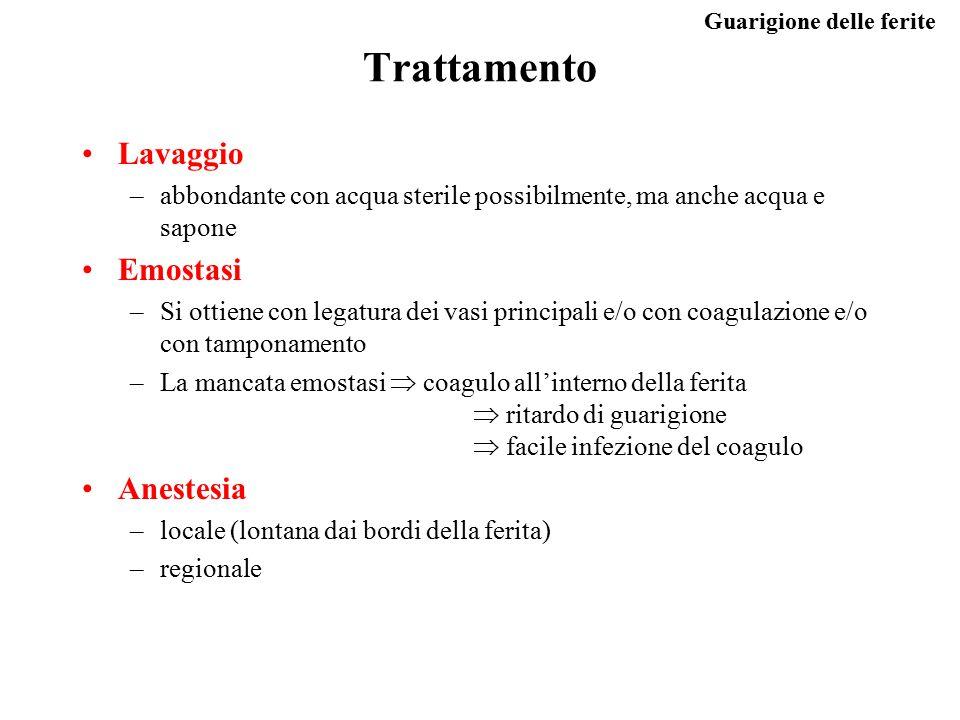 Trattamento Lavaggio Emostasi Anestesia