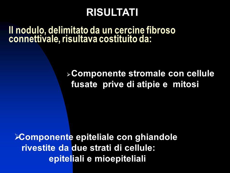 RISULTATI Il nodulo, delimitato da un cercine fibroso connettivale, risultava costituito da: