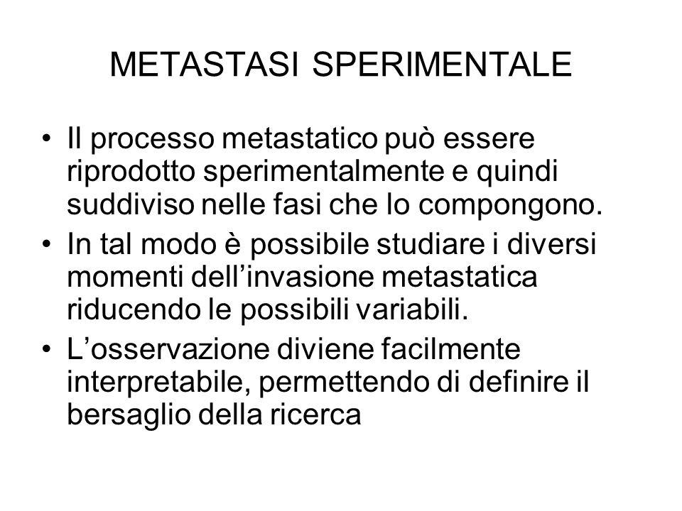 METASTASI SPERIMENTALE