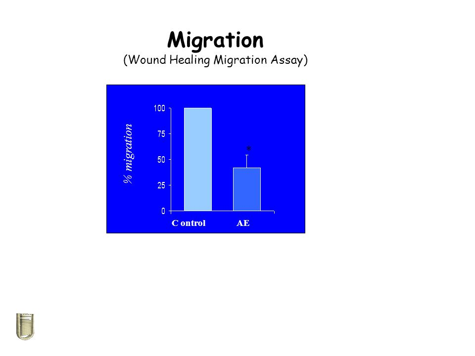 (Wound Healing Migration Assay)