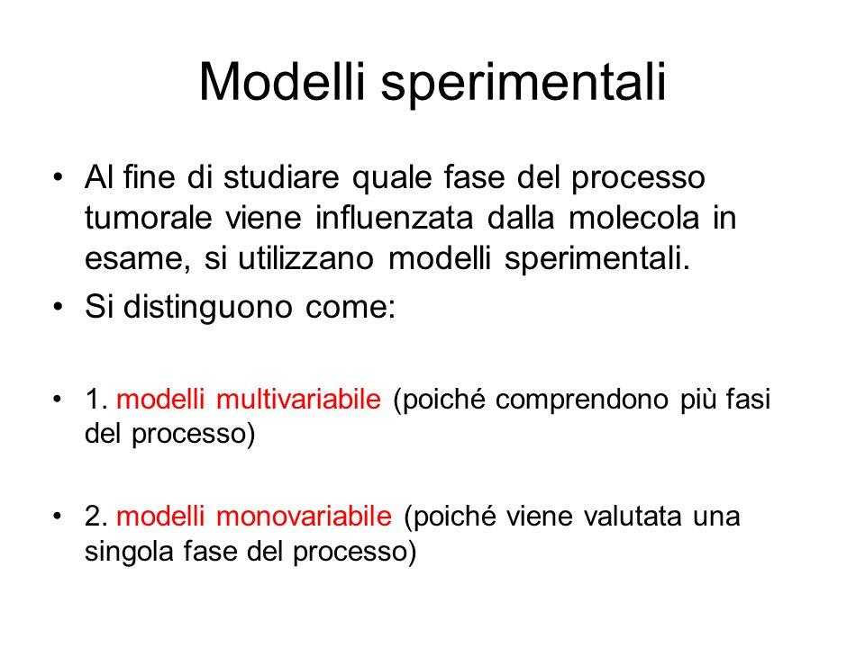 Modelli sperimentali