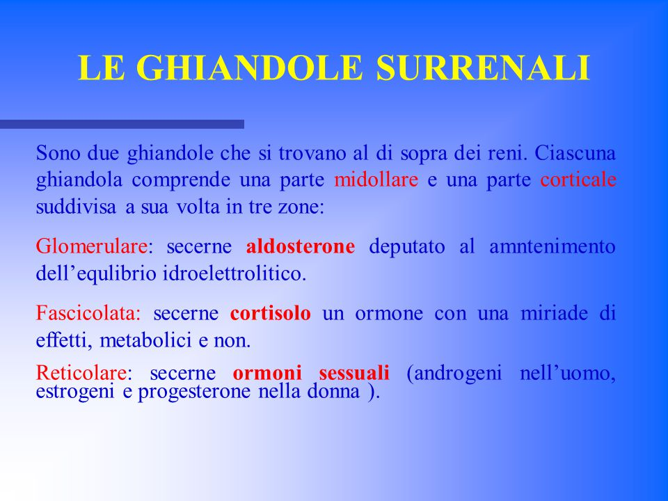 LE GHIANDOLE SURRENALI