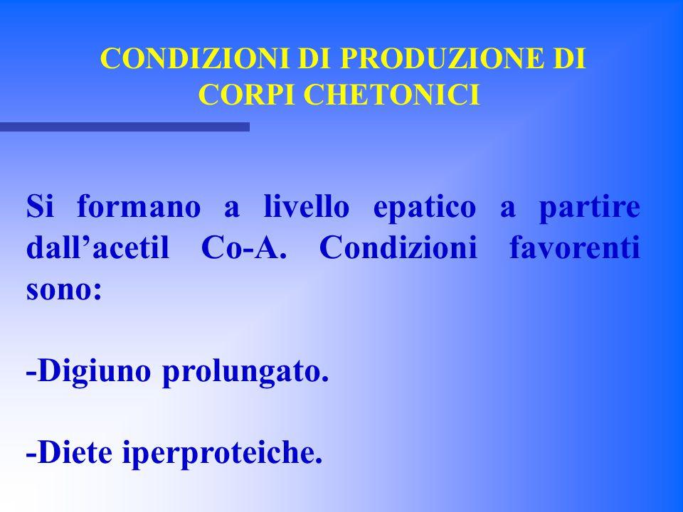 CONDIZIONI DI PRODUZIONE DI CORPI CHETONICI