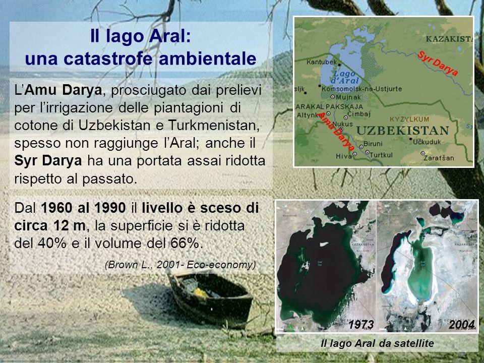 una catastrofe ambientale Il lago Aral da satellite