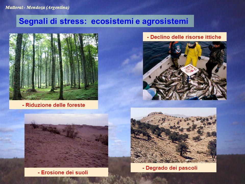 - Riduzione delle foreste