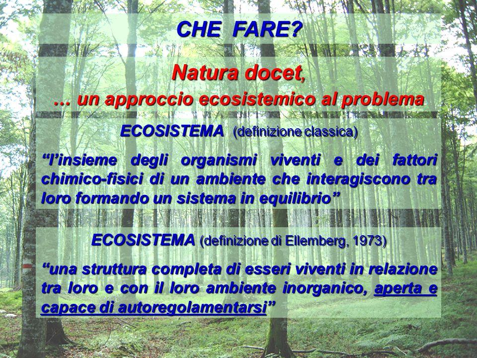 … un approccio ecosistemico al problema