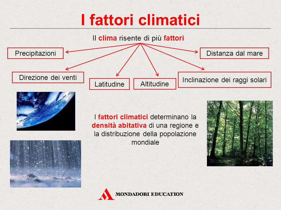 I fattori climatici Il clima risente di più fattori Precipitazioni