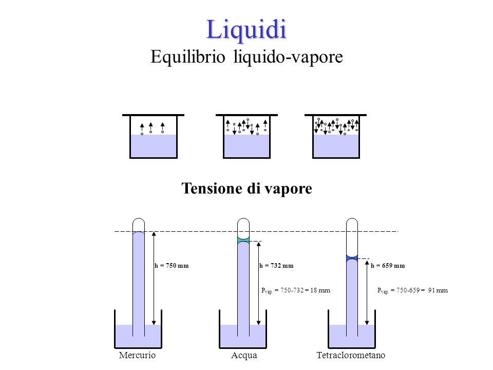 Liquidi Equilibrio liquido-vapore