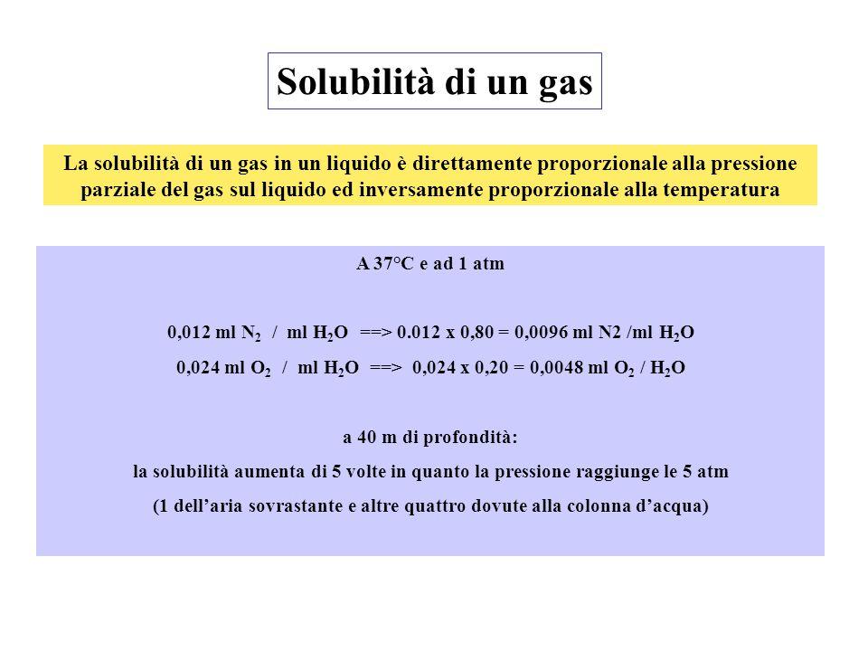 Solubilità di un gas