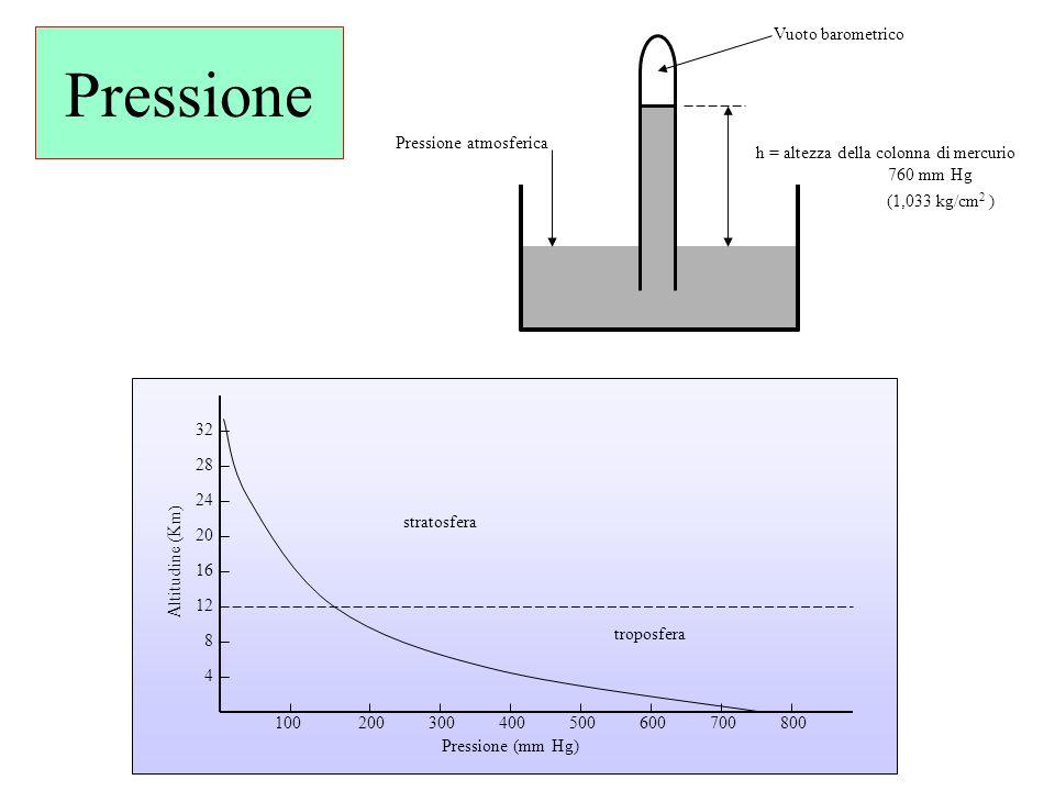 Pressione h = altezza della colonna di mercurio 760 mm Hg