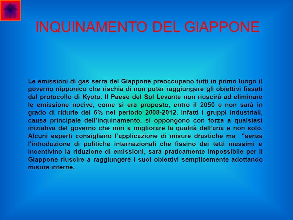 INQUINAMENTO DEL GIAPPONE