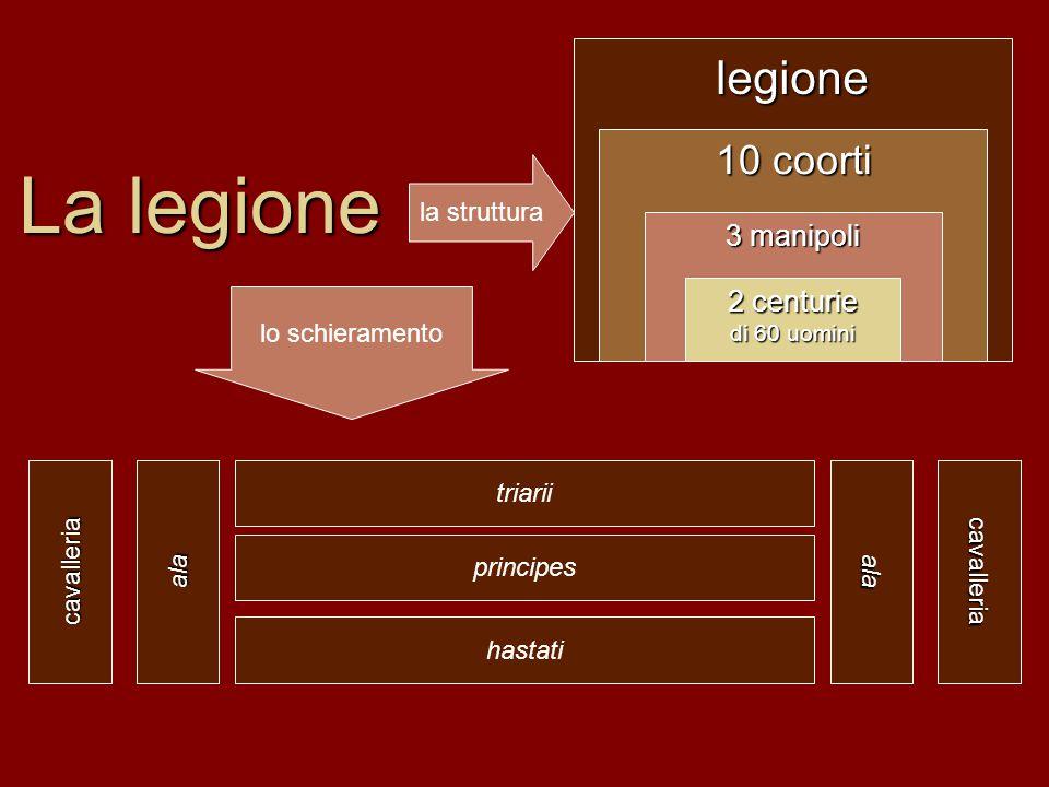 La legione legione 10 coorti 3 manipoli 2 centurie la struttura