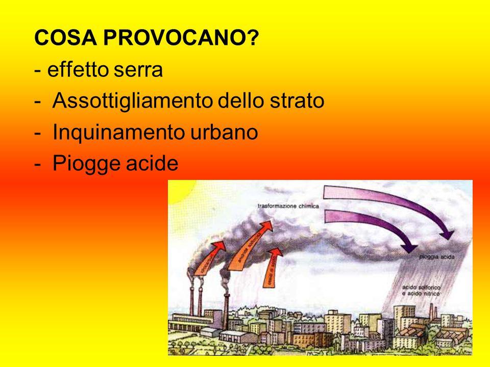 COSA PROVOCANO - effetto serra Assottigliamento dello strato Inquinamento urbano Piogge acide