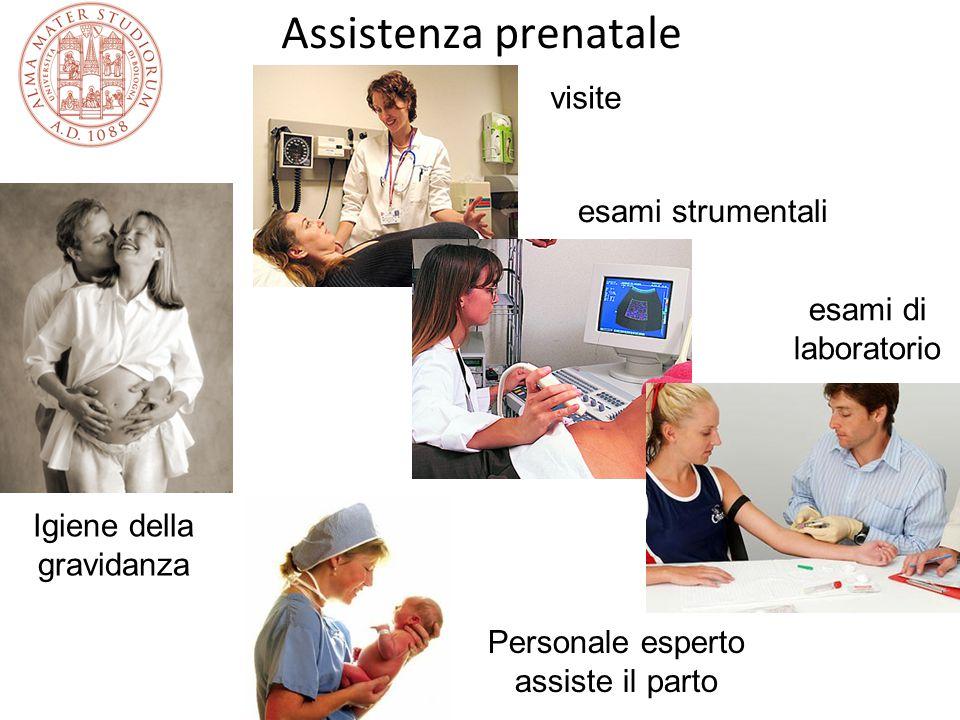 Assistenza prenatale visite esami strumentali esami di laboratorio