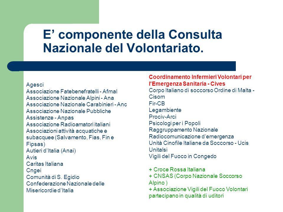 E' componente della Consulta Nazionale del Volontariato.