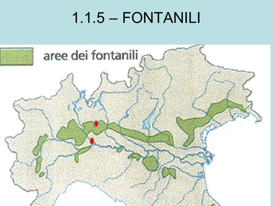 1.1.5 – FONTANILI
